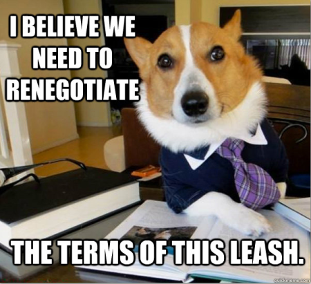 Lawyer-Dog-Leash