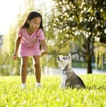 littlegirl_and_dog