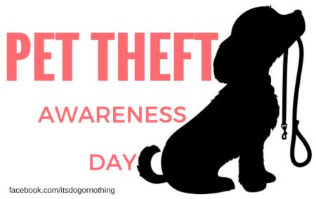 pet-theft