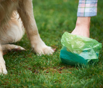 pickingupdogpoop-istock-000021971845small-335lc072914jpg