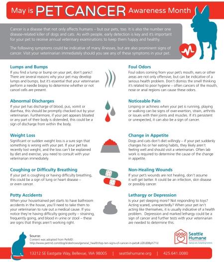 Pet-Cancer-Month